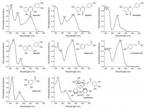 UV spectra of polyphenols