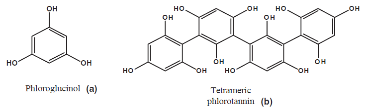 Fig. 1. Structures of phloroglucinol (a), the phlorotannin building unit, and a tetrameric phlorotannin (b) consisting of four phloroglusinol units.
